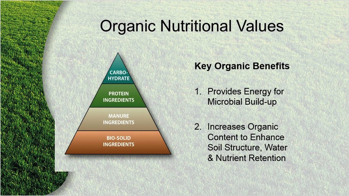 The Long-Term Benefits Of Organic Fertilizers