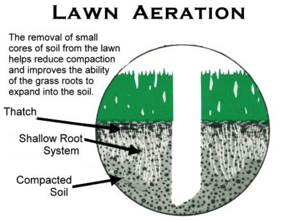 5 Reasons To Aerate Your Customer's Lawn This Fall